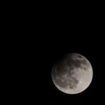Zatmění měsíce na jihu Moravy. Autor: Martin Veverka