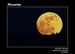 Částečné zatmění Měsíce. Autor: Jan Filip