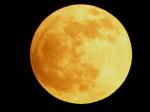 Částečné zatmění Měsíce. Autor: Martin Krejčí