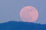 Částečné zatmění Měsíce. Autor: Milan Hlobil