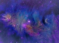 NGC 2264 v nepravých barvách pořízená přes úzkopásmové filtry Ha,SII,OIII. Autor: Zdeněk Bardon