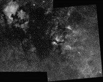 Souhvězdí Labuť s emisními mlhovinami Autor: Ivan Majchrovič