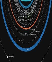 Schéma Uranových prstenců a drah jeho měsíčků Autor: commons.wikimedia.org