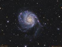 Galaxie M101 zvaná Větrník Autor: Martin Myslivec