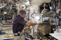 Astronaut Dan Burbank při práci na experimentu ACE na mikroskopické laboratoři Mezinárodní vesmírné stanice Autor: NASA
