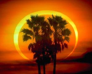 Prstencové zatmění Slunce. Autor: Dennis Mannama. Zdroj: APOD
