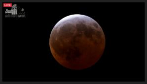 Střed úplného zatmění Měsíce 4. dubna 2015 - nejkratšího v tomto století! Autor: Griffithova observatoř.