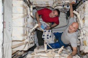 Tom Marshburn a Luca Parmitano vykládají přetlakový modul lodi HTV 4; léto 2013 Autor: NASA