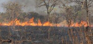 Lesní požáry v jižní Africe v září 2014, první opravdové nasazení dat sondy Suomi Autor: NASA