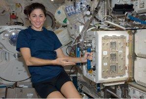 Astronautka Nicole Stott pracuje se zařízením, ve kterém jsou chovány pokusné myšky (2009) Autor: NASA