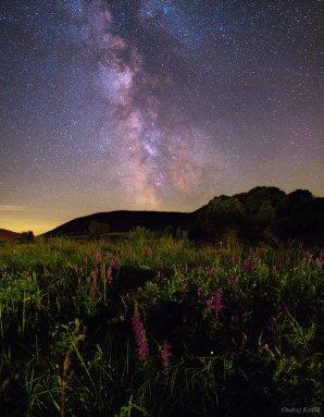 Krásná letní Mléčná dráha v Poloninách. Autor: Ondrej Králik