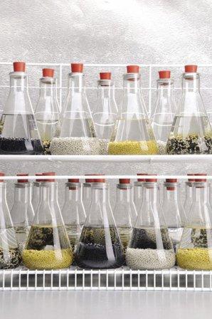 Vzorky hnojiv od Florikanu při laboratorních zkouškách. Autor: NASA/SPINOFF.
