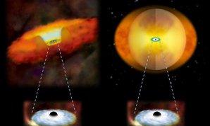 Ilustrácia porovnáva rastúce supermasívne čierne diery v dvoch typoch galaxií. Rastúca supermassívna čierna diera v klasickej galaxii by mala okolo seba štruktúru plynu a prachu v tvare šišky (vľavo). V zlučujúcej sa galaxii materiál zahalí čiernu dieru (vpravo). Autor: National Astronomical Observatory of Japan