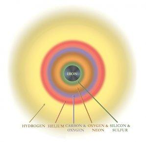 Složení hvězdy před explozí v podobě supernovy Autor: NASA/CXC/S. Lee