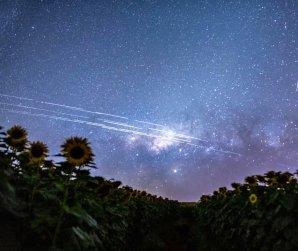 Světelné stopy satelitů Starlink Autor: Egon Filter