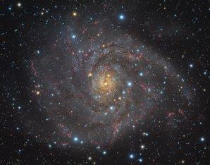 IC 342 Autor: Robert Novotný