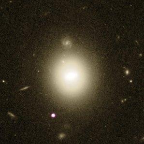 Bílo-fialovou barvou je znázorněna poloha rentgenového zdroje na periferii čočkovité galaxie uprostřed snímku Autor: X-ray – NASA/CXC/UNH/D. Lin et al; optical – NASA/ESA/STScI