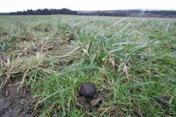 Meteorit Žďár z roku 2014 nalezený po pádu bolidu 9. prosince toho roku. Leží na poli ve vědci vypočtené pádové oblasti nedaleko Žďáru nad Sázavou, kde byl nalezen několik týdnů po pádu. Autor: Lukáš Shrbený, Astronomický ústav AV ČR.