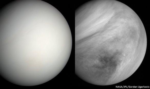 Venuše ze sondy MESSENGER Autor: NASA/JPL/Gordan Ugarkovic