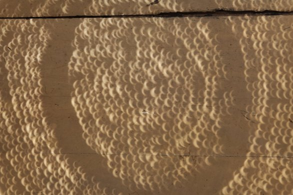 Spoustu slunečních srpečků promítnutých přes slamák na zem při zatmění Slunce 1. září 2016 na Madagaskaru. Autor: Stanislav Daniš.