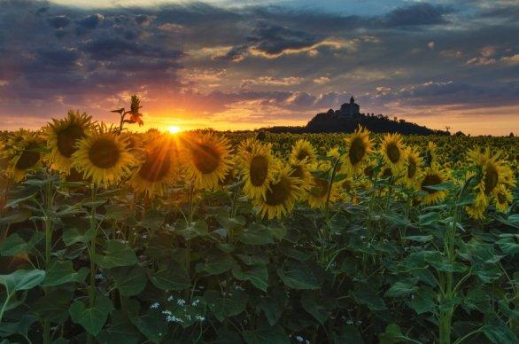 Celým mým vesmírem je můj kraj. Autor: Miroslava Schärfnerová