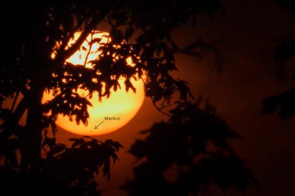 Západ Slunce s Merkurem 9. května 2016 mezi stromy. Autor: Petr Horálek.