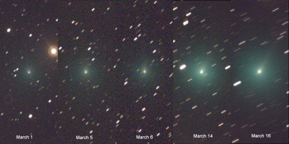 Rapidní zjasňování komety C/2019 Y4 ATLAS v průběhu první poloviny března. Autor: Terry Lovejoy.